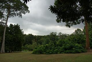 2010年2月15日Singapore Botanic Garden (4).jpg