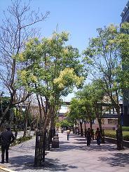 2011-04-20 11.45.49.jpg