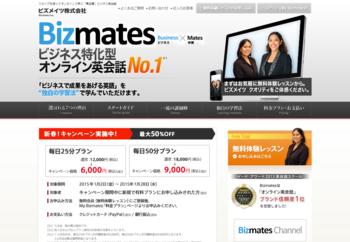 bizmate.png