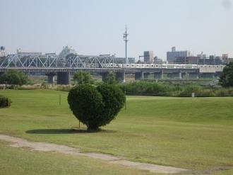 tamagawa130613-2.jpg